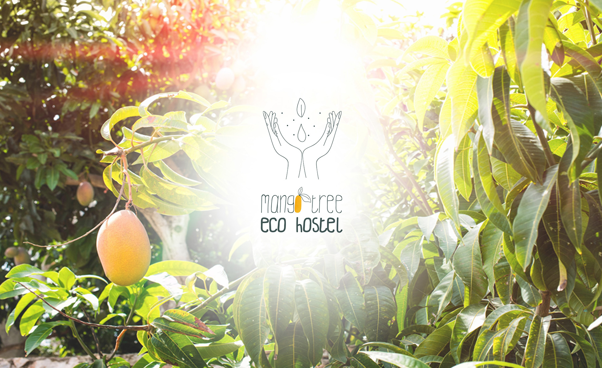 Mango Tree EcoHostel logo banner
